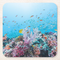 Scuba Diving With Colorful Reef And Coral Square Paper Coaster