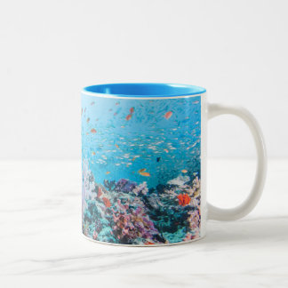Scuba Diving With Colorful Reef And Coral Two-Tone Coffee Mug
