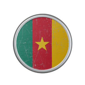 Scuffed and Scratched Cameroon Flag Speaker
