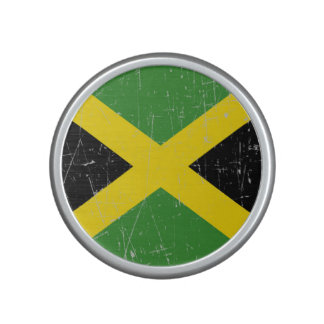 Scuffed and Scratched Jamaican Flag Speaker