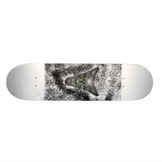scull skate board