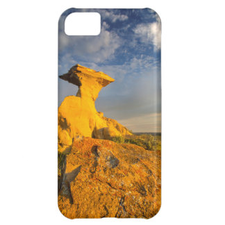 Sculpted Badlands Formation In Short Grass iPhone 5C Cover