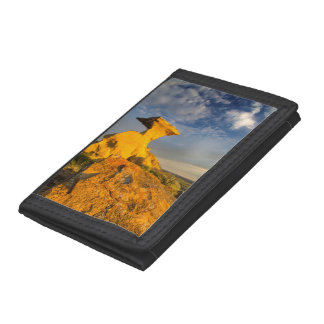 Sculpted Badlands Formation In Short Grass Tri-fold Wallet