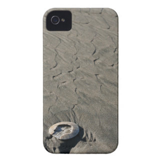 Sculpted Sand & Shell iPhone 4 Cover