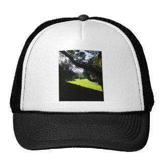 Sculpture Trucker Hat