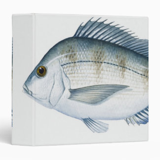 Scup Fish 3 Ring Binder