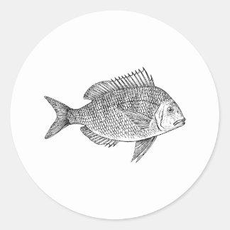 Scup Fish Graphic Round Sticker