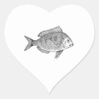 Scup Fish Graphic Heart Sticker