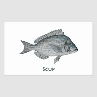 Scup Rectangle Stickers