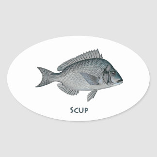 Scup Oval Sticker