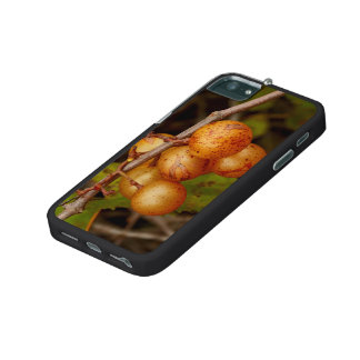 Scuppernong iPhone 5 Case