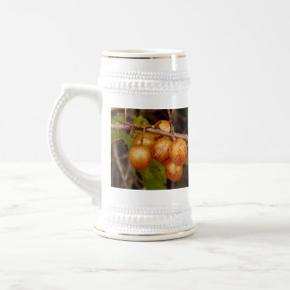 Scuppernongs Beer Stein