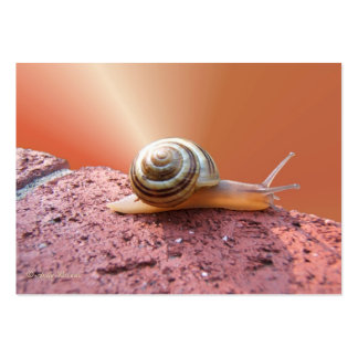 Scurrying Snail ~ ATC Business Card