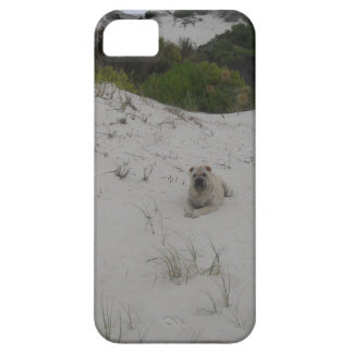 SDC11313.JPG iPhone 5 CASES