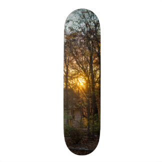 Sdc Woods Sunset Skateboard Deck