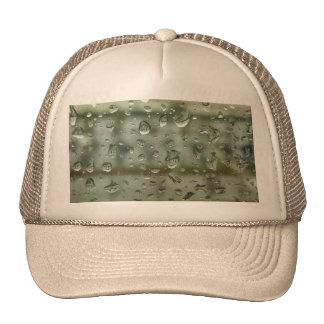 sdfsdf trucker hat