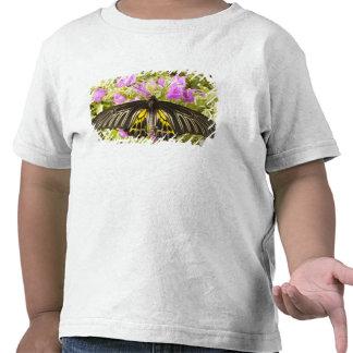 SE Asia, Tailandia, Khon Kaen, los 2 de oro Camiseta