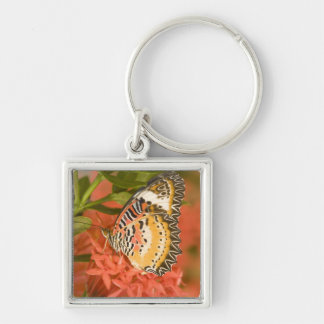 SE Asia, Thailand, Nam Nao National Park, The Silver-Colored Square Keychain