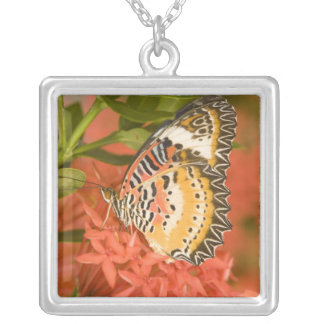 SE Asia, Thailand, Nam Nao National Park, The Square Pendant Necklace