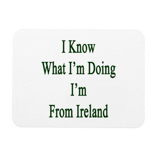 Sé cuál soy haciendo yo soy de Irlanda Imán De Vinilo