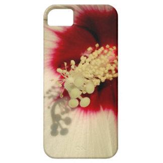 SE del teléfono de la foto de la flor blanca + Funda Para iPhone SE/5/5s
