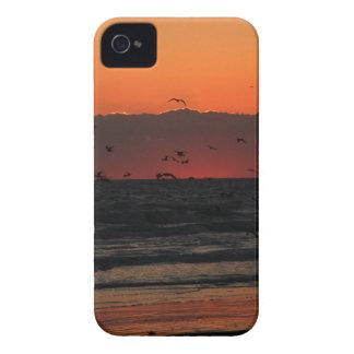 Se elevan los pájaros carcasa para iPhone 4
