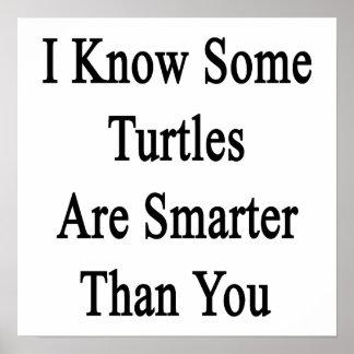 Sé que algunas tortugas son más elegantes que uste impresiones