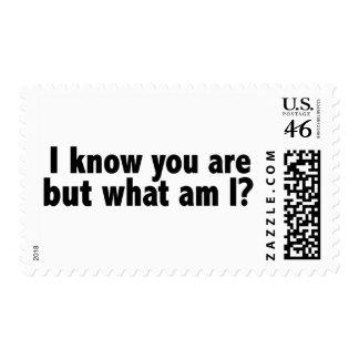 Sé que usted es cuáles son yo sello