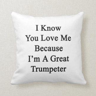 Sé que usted me ama porque soy un gran trompetista cojines