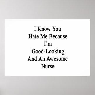 Sé que usted me odia porque soy apuesto y póster