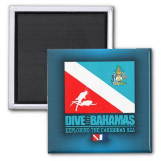 Se zambullen las Bahamas Imán Cuadrado