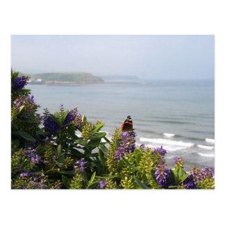 Sea 2 postcard