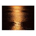 Sea 7 postcard