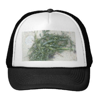 Sea and Sand Trucker Hat