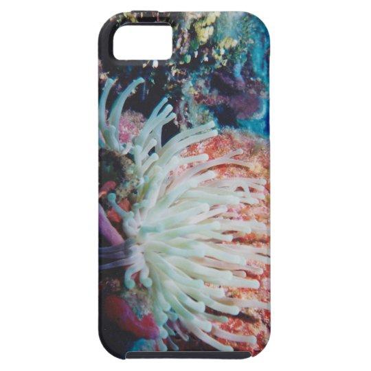 sea anemone redux2 iPhone SE/5/5s case