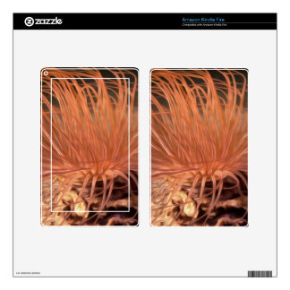 Sea Anemone Skin For Kindle Fire