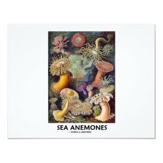 Sea Anemones 4.25x5.5 Paper Invitation Card