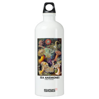 Sea Anemones Aluminum Water Bottle