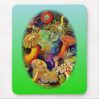 Sea Anemones Mouse Pad