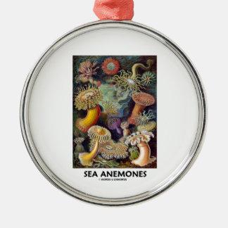 Sea Anemones Ornament