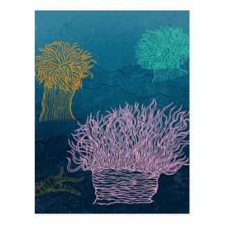 Sea anemones postcard