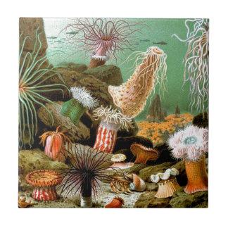 Sea anemones underwater scene ceramic tile
