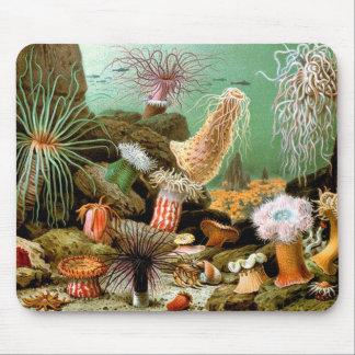 Sea anemones underwater scene mousepad