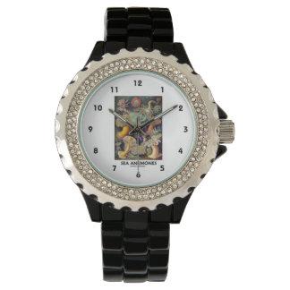 Sea Anemones Wristwatches