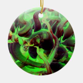 Sea anenome red green photo ornaments