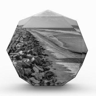 Sea Barrier Atlantic Ocean Georgia Black and White Acrylic Award
