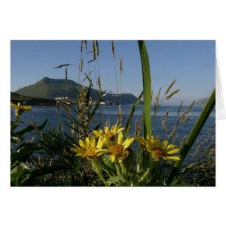 Sea Beach Senecio, Unalaska Island Card