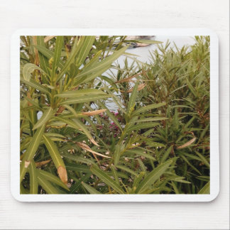 Sea behind the plants mouse pad