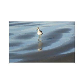 Sea Bird 1 wrappedcanvas