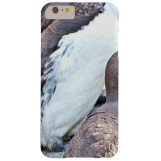 Sea Bird On Rock Stone Barely There iPhone 6 Plus Case